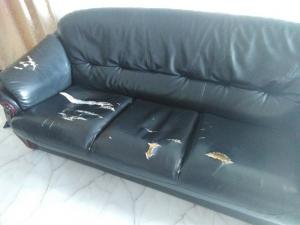 Sofa Set 3+1+1 (Damro)