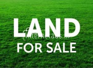 Land for sale in Pattiya junction (Kalaniya)