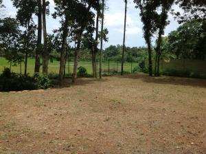 33.5 P land for sale at Battaramulla, Pelawatta