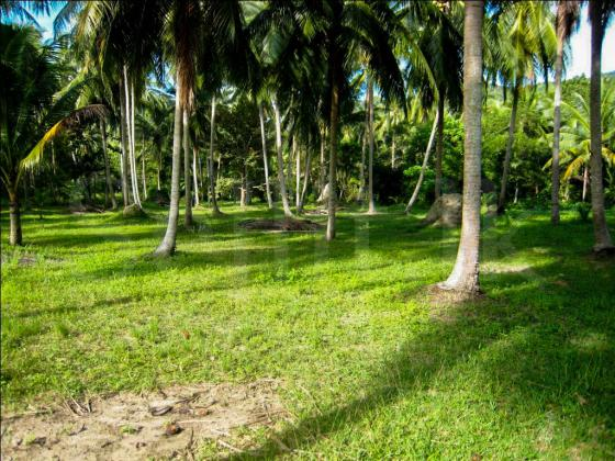 Land for sale in Horana - Boralugoda