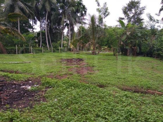 Land for sale in Warakagoda