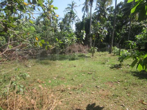 Land for sale in Delgoda