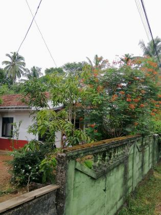 House for Rent in Ragama