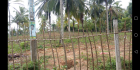 Valuable land for sale in Weligama