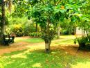 Land with House Sale in Anuradhapura