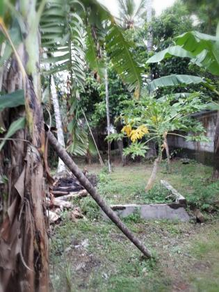 Land for sale in Epitamulla