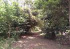 Land with antique house for sale in hikkaduwa