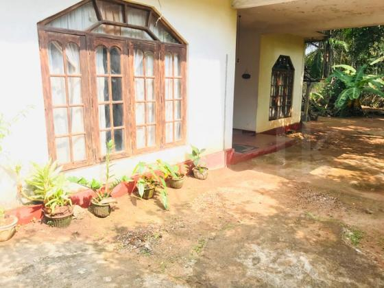 Valuable Property for Sale with House  Malabe