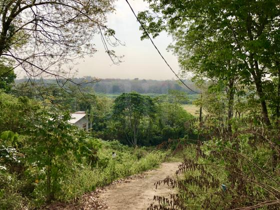 Land for sale in Panadura