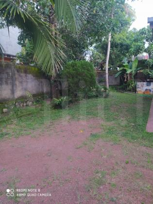 Land for sale Palanwattha