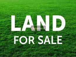 A Land for Sale
