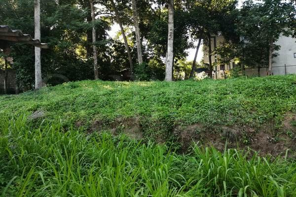 Code 3118 land for sale kandy