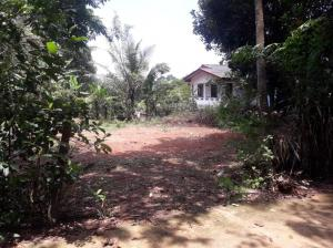 Land For sale in Ganemulla